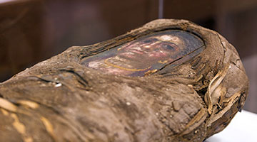 "press photo from ""Paint the Eyes Softer: Mummy Portraits from Roman Egypt"""