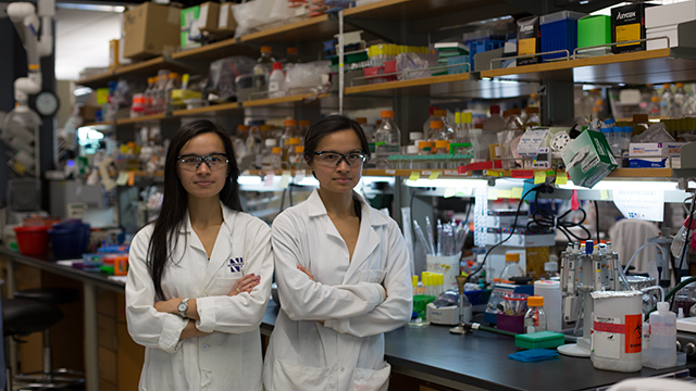 Twin sisters Andrea (left) and Anne d'Aquino in the Silverman Hall laboratory